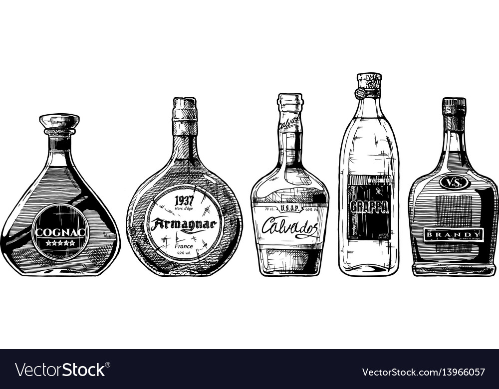 Types of brandy vector image