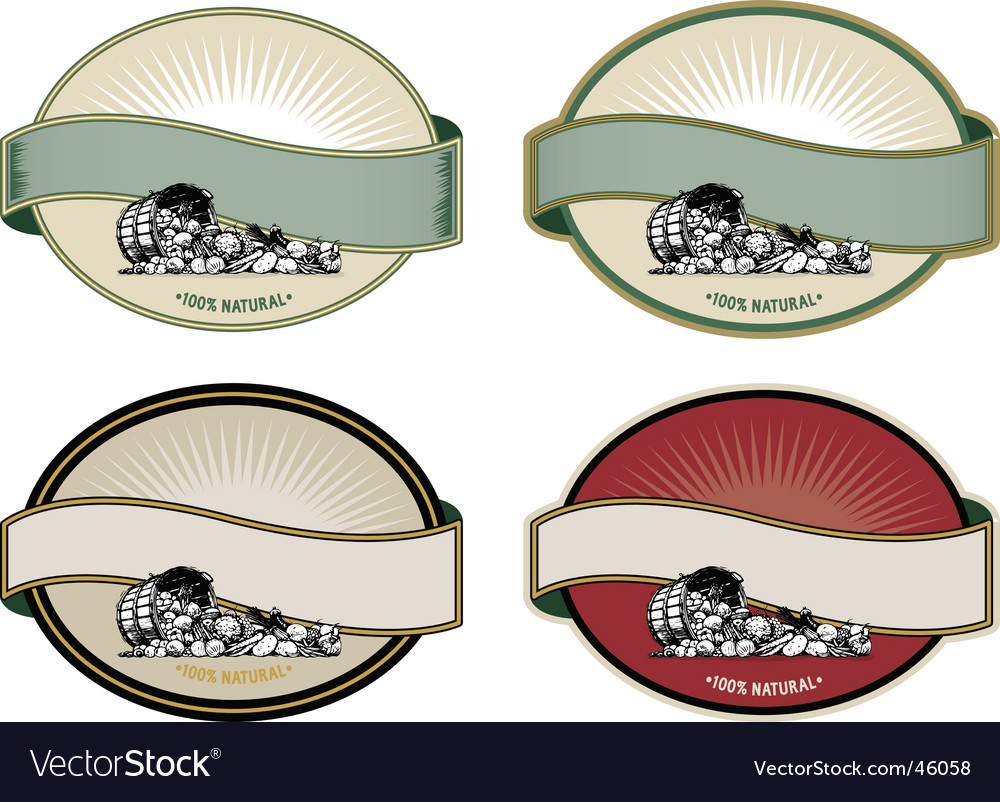 Label templates vector image