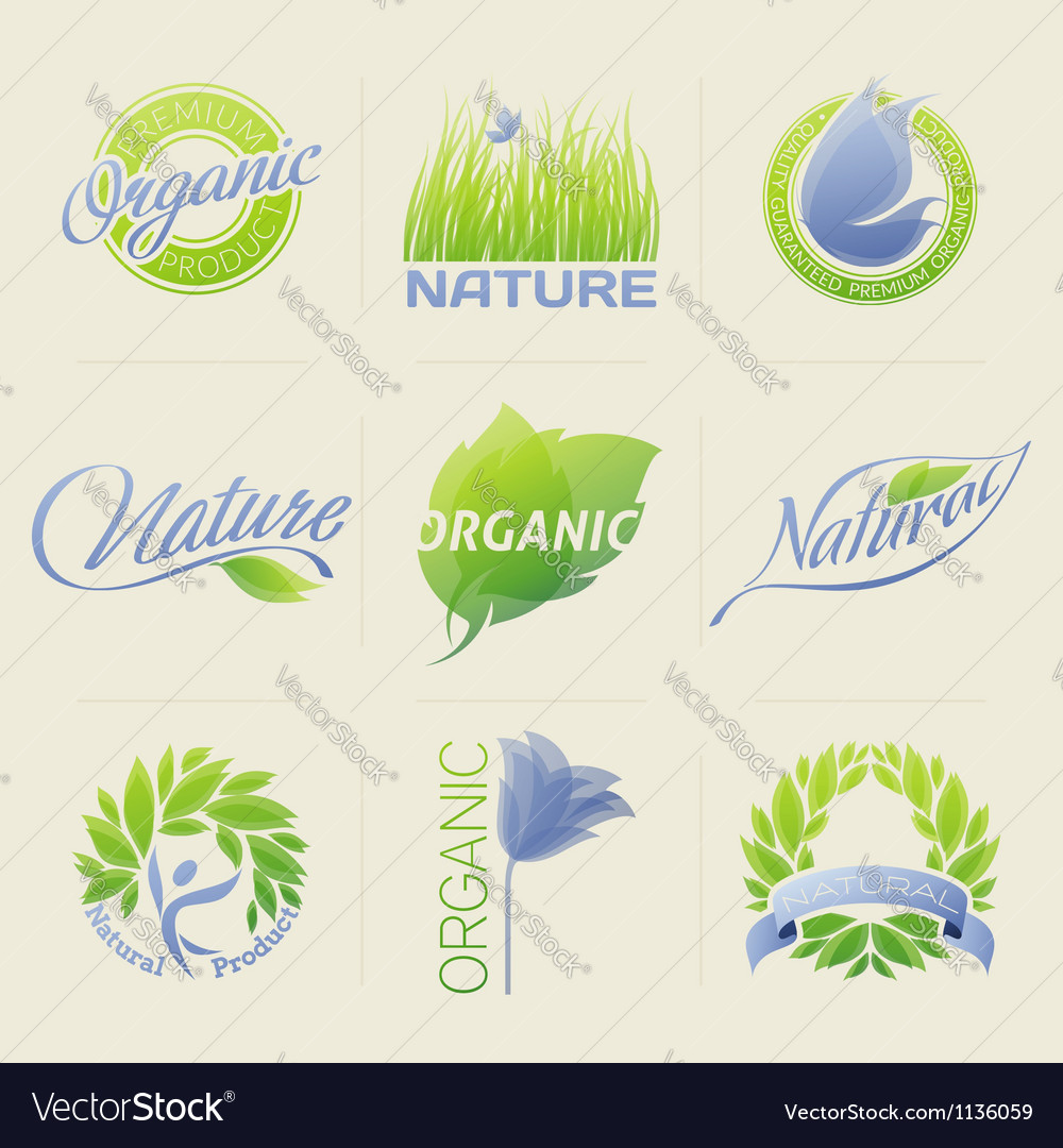 Nature labels badges with leaves flowers vector image