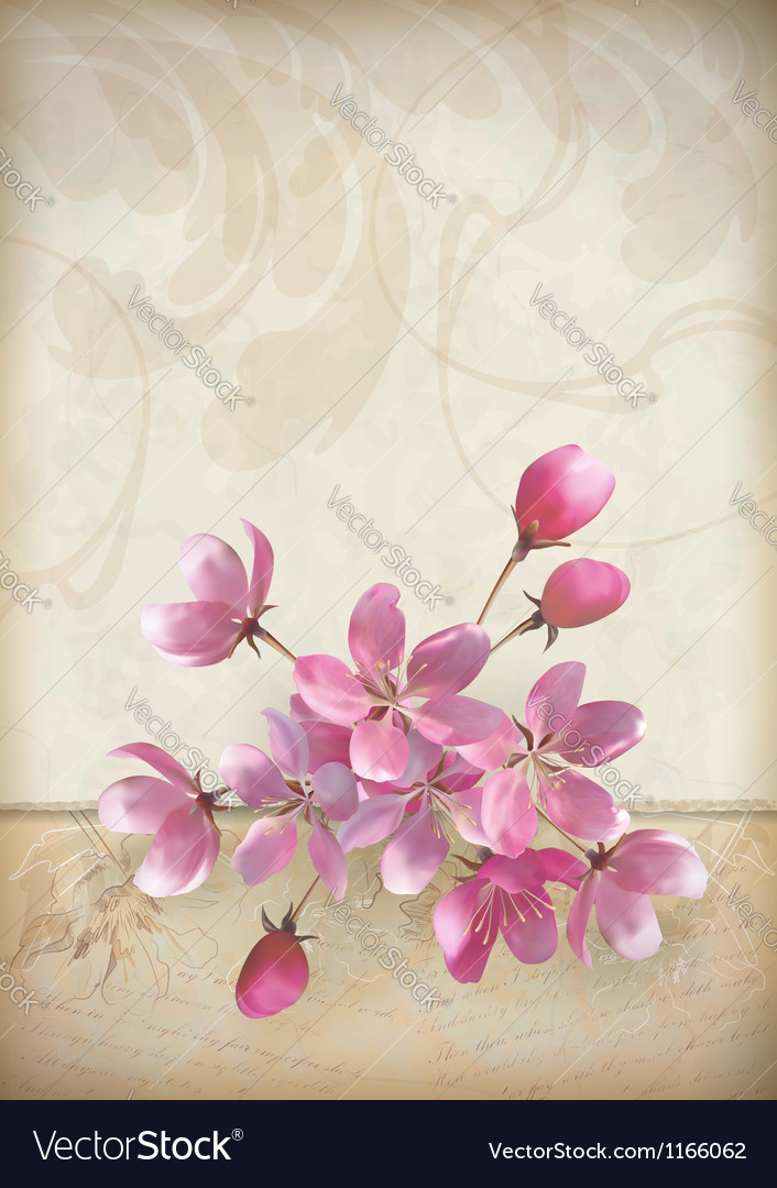 Realistic cherry blossom flower arrangement vector image