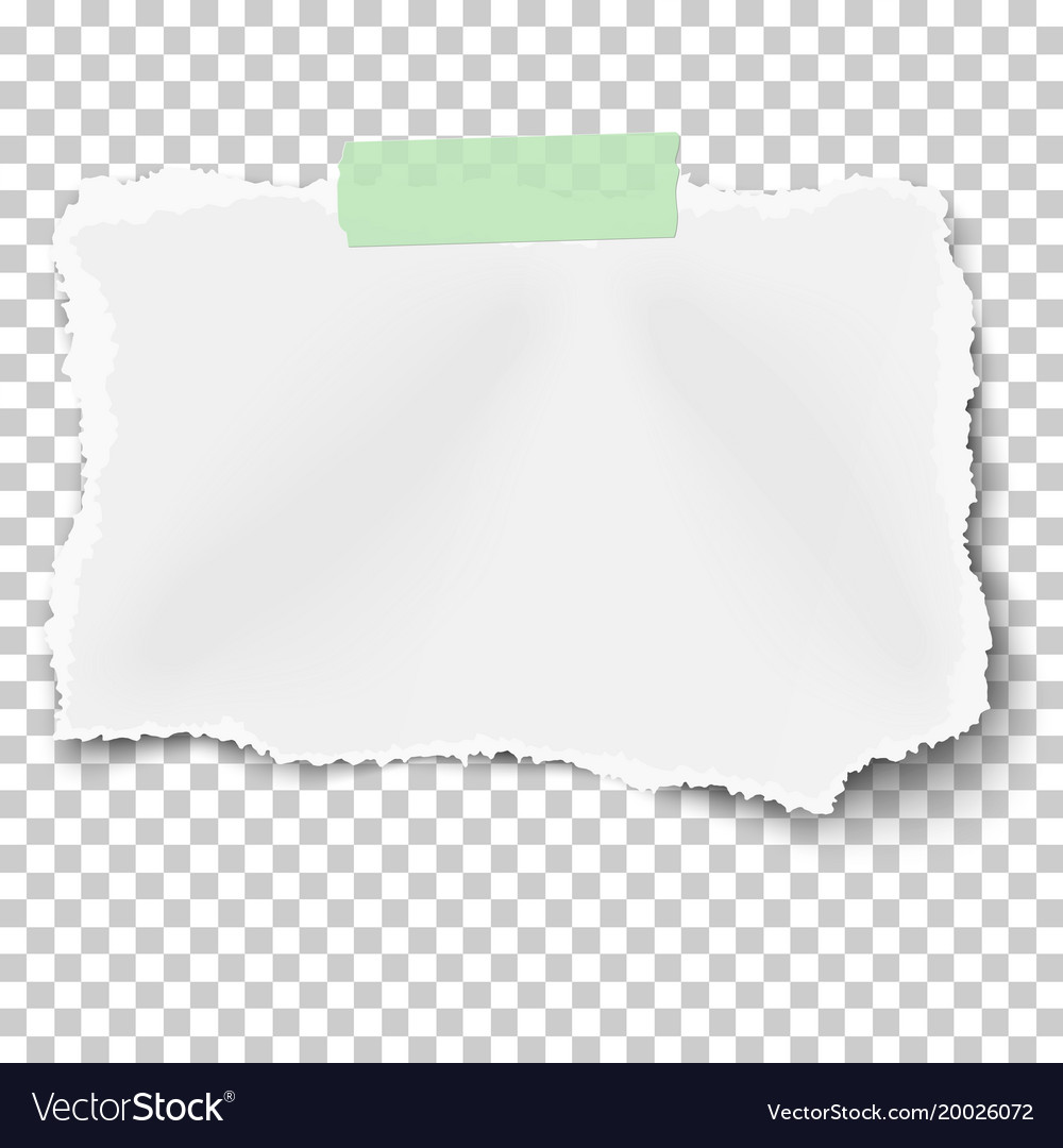 Filegraph Paper Mm Green A4svg claims attorney cover letter
