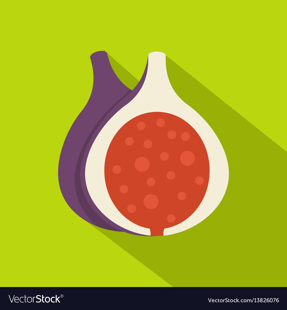 Half of fig fruit icon flat style vector image