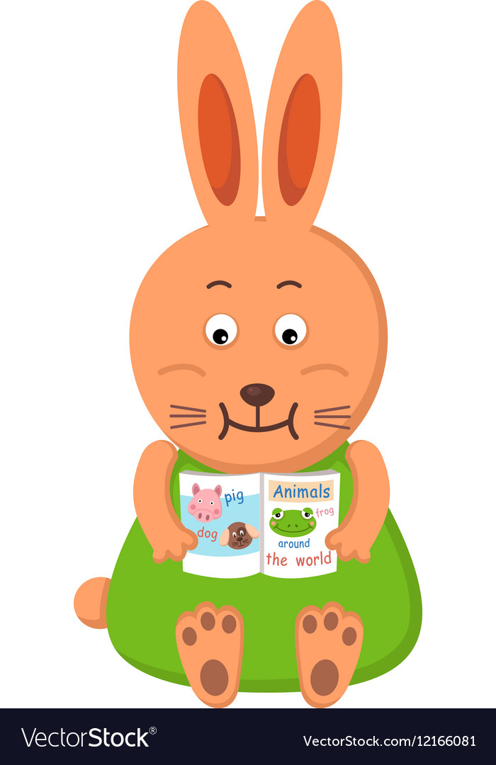 Rabbit reading vector image