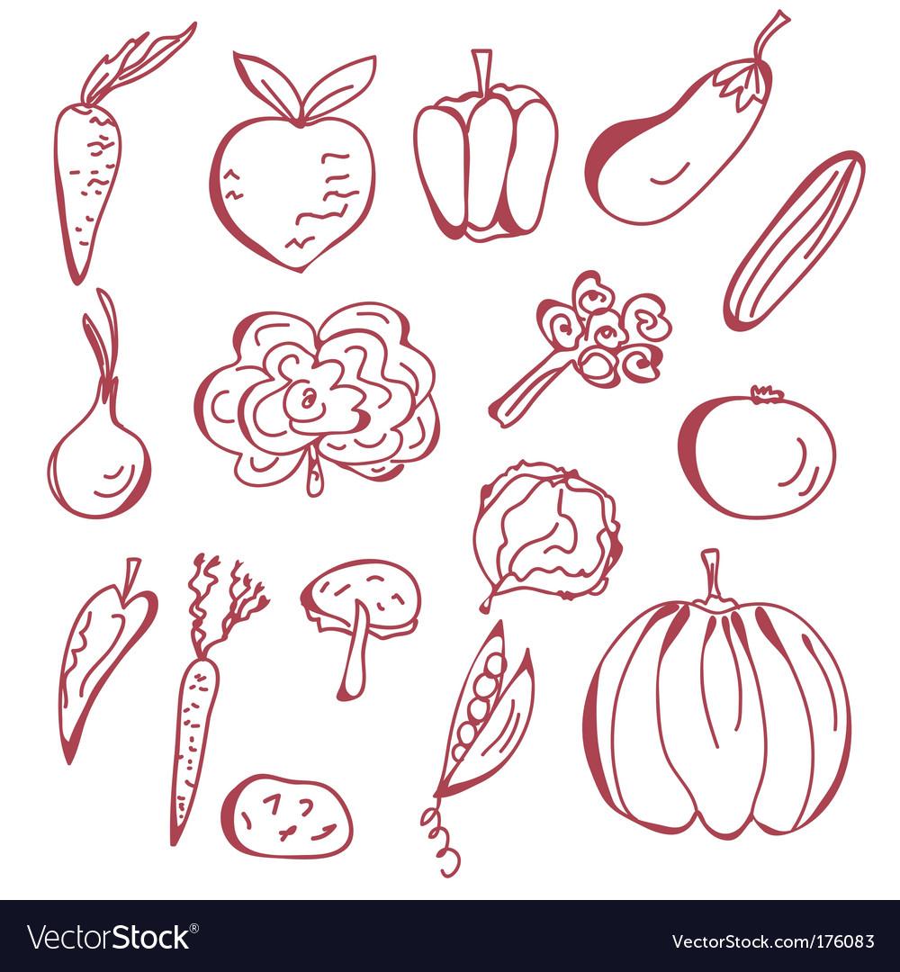Sketch of vegetables vector image