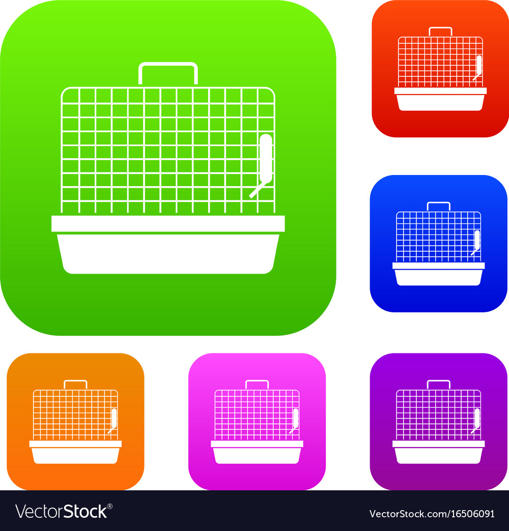 Cage for birds set collection vector image