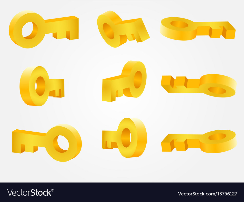 Golden key in different angles vector image