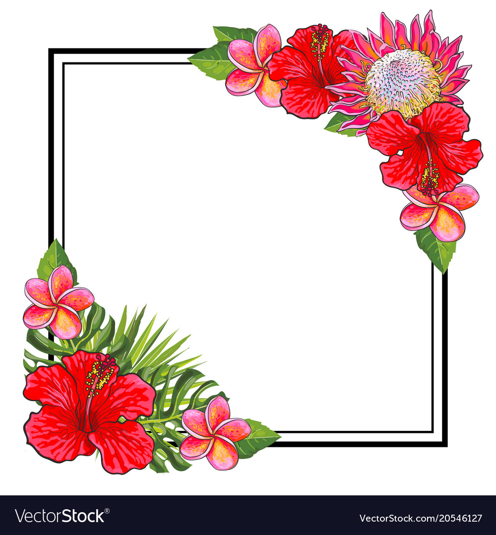 Tropical flowers bouquet elements at corners of vector image izmirmasajfo Gallery