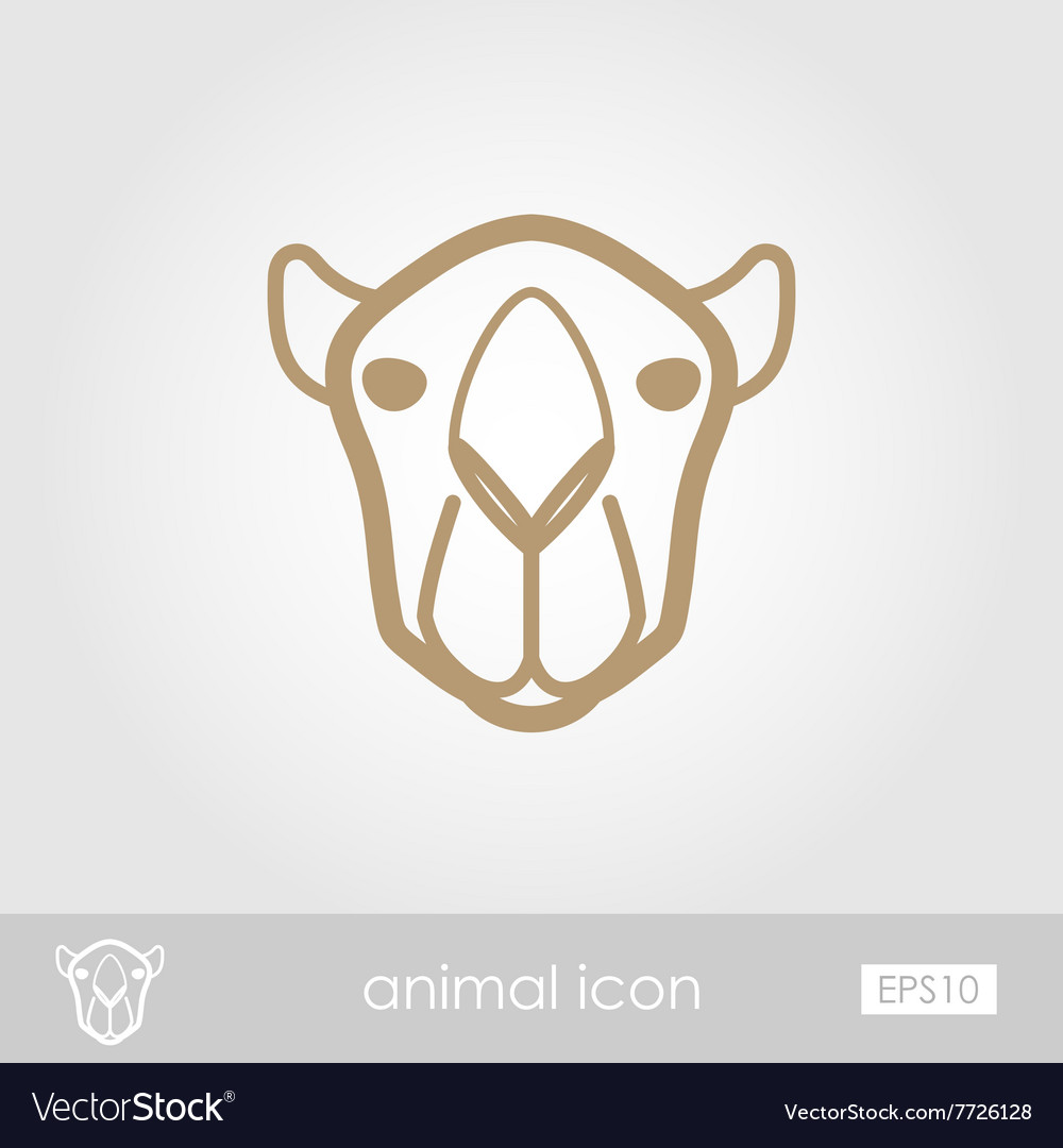 Camel outline thin icon Animal head symbol vector image
