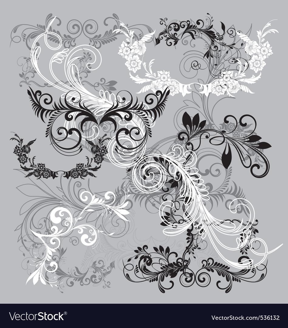 Floral scrip filigrees vector image