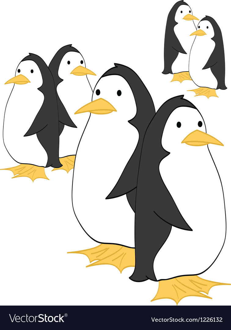 Penguin Couples vector image