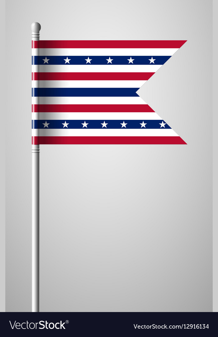 Stars and Stripes Flag vector image