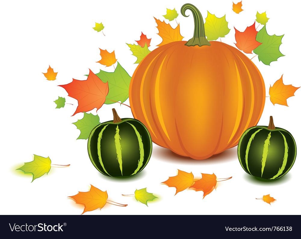 Pumpkin background vector image