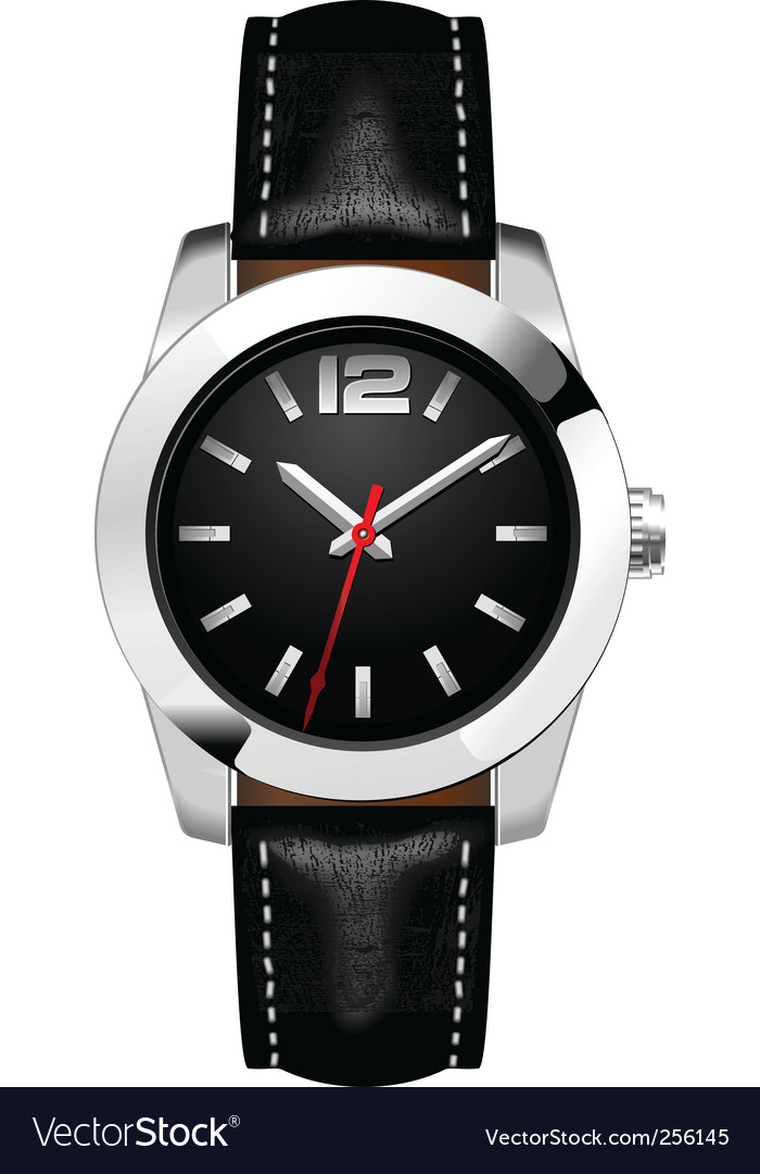 Man's watch  vector image