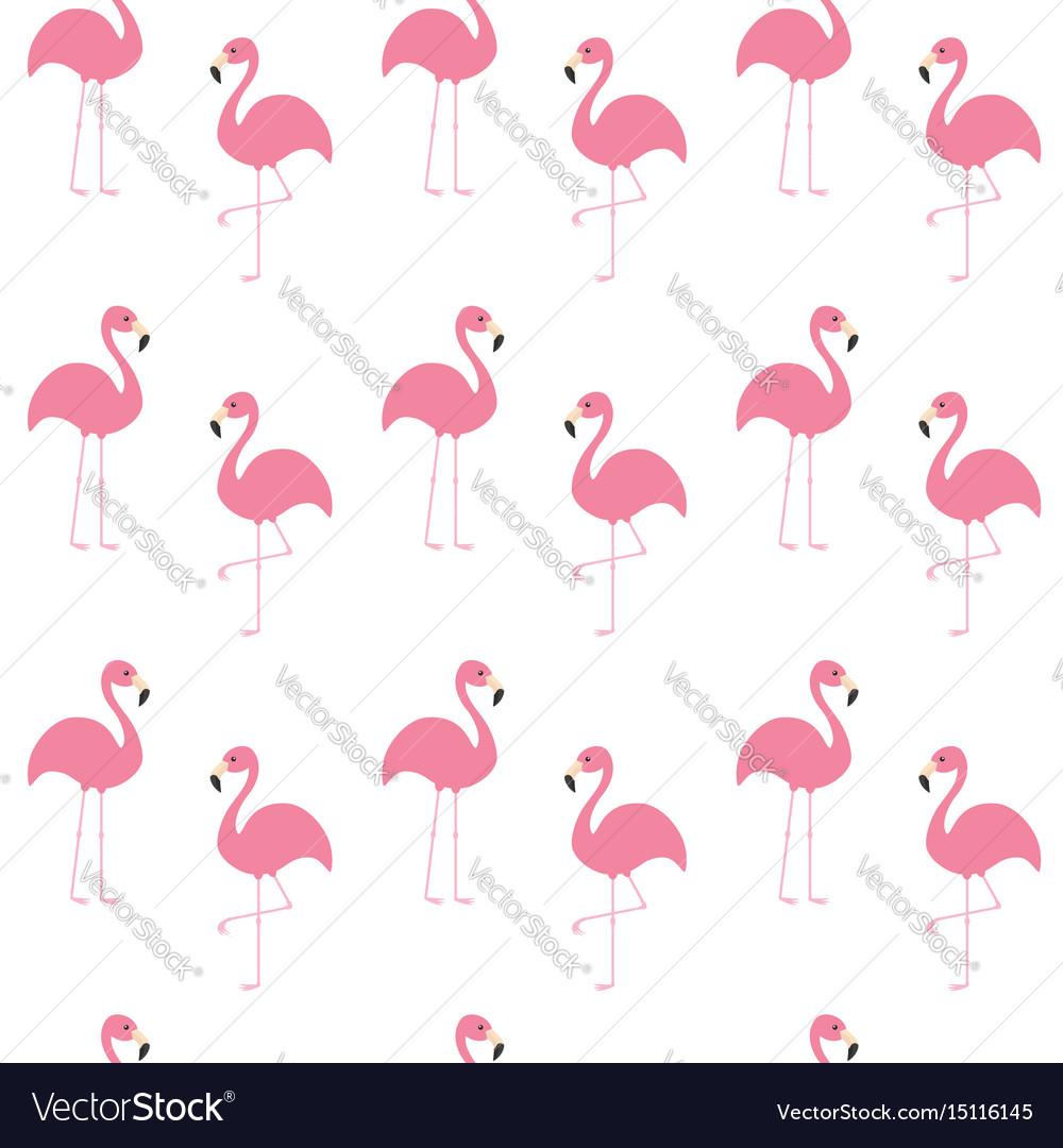 Flamingo set seamless pattern exotic tropical vector image