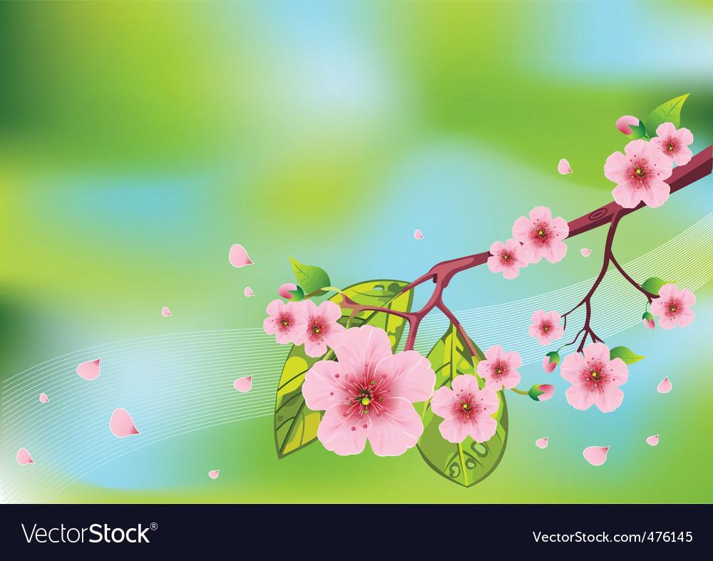Floral spring background vector image