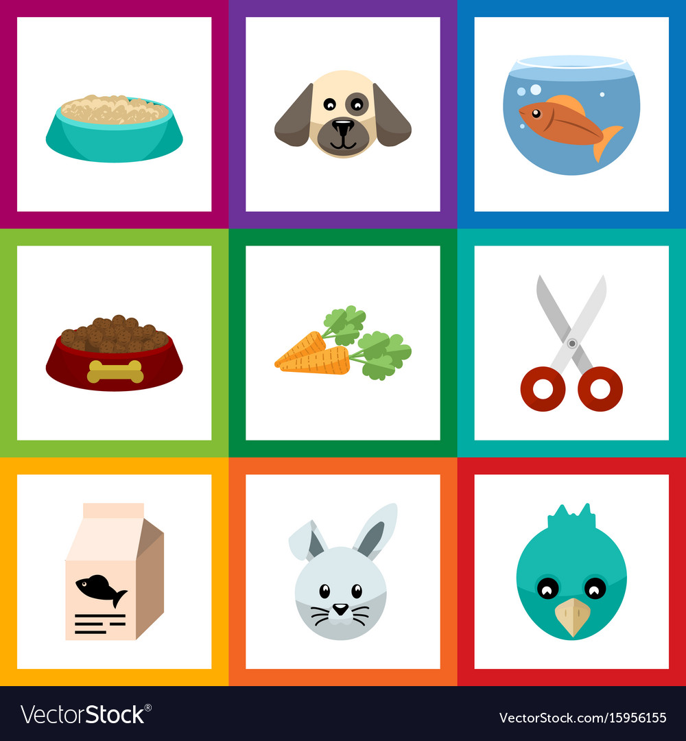 Flat icon pets set of fishbowl shears dog food vector image
