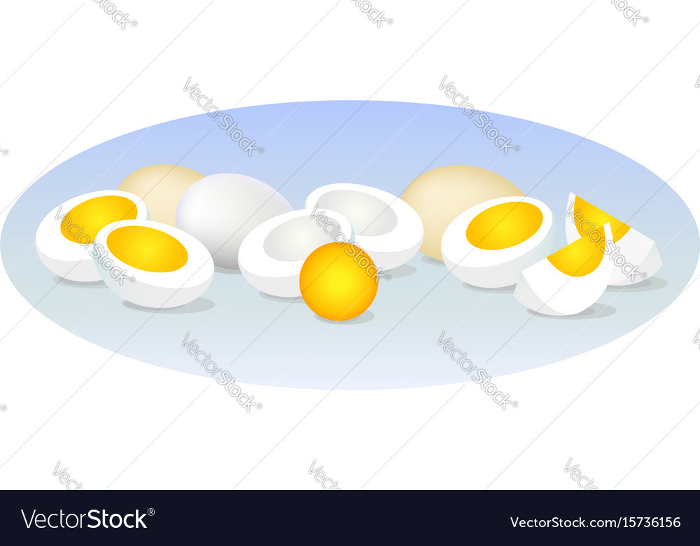 Eggs vector image