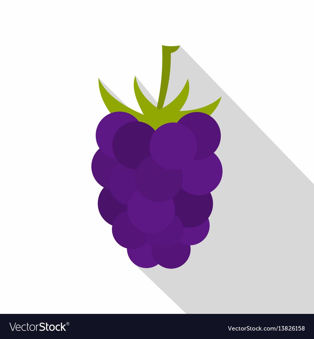 Fresh blackberry icon flat style vector image