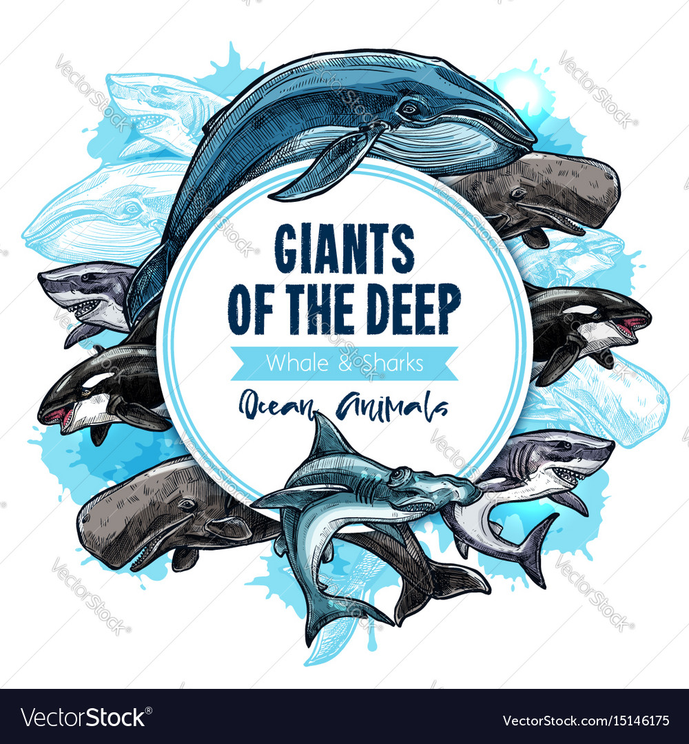 Big giant sea animals or fish poster vector image