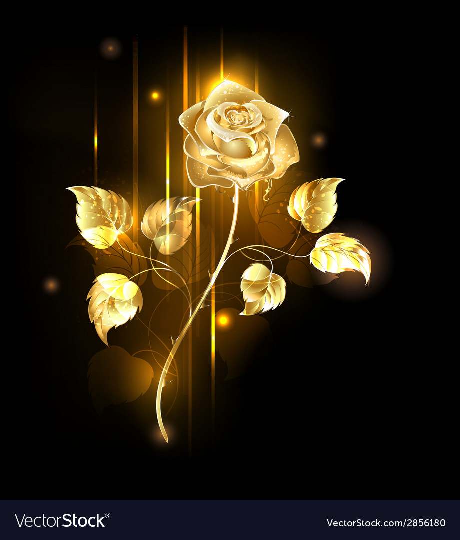 Golden Rose vector image