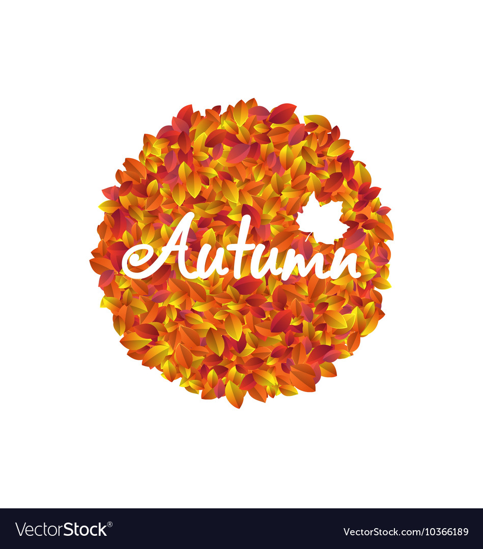 Autumn Round Frame with Orange and Yellow Leaves vector image