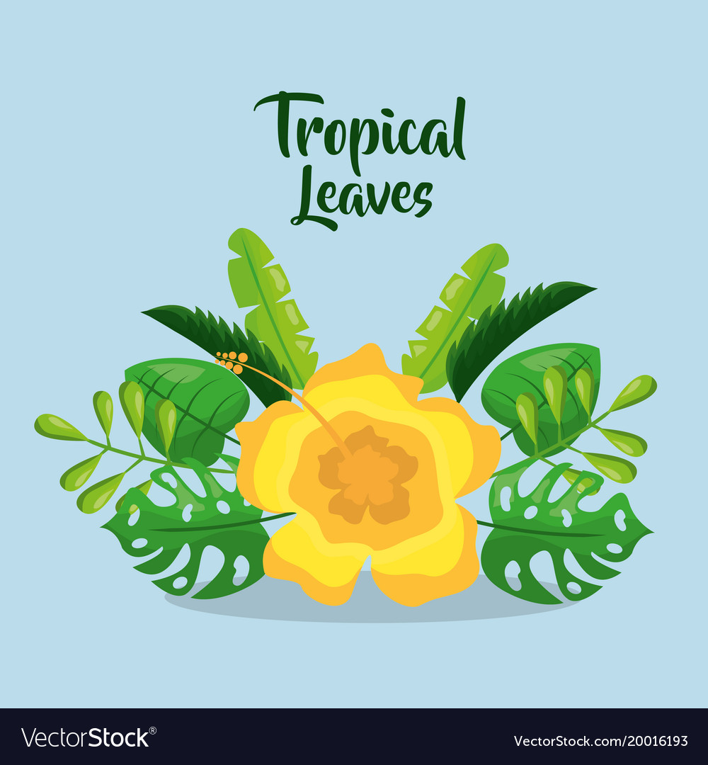 Tropical leaves invitation card yelow flower vector image stopboris Images