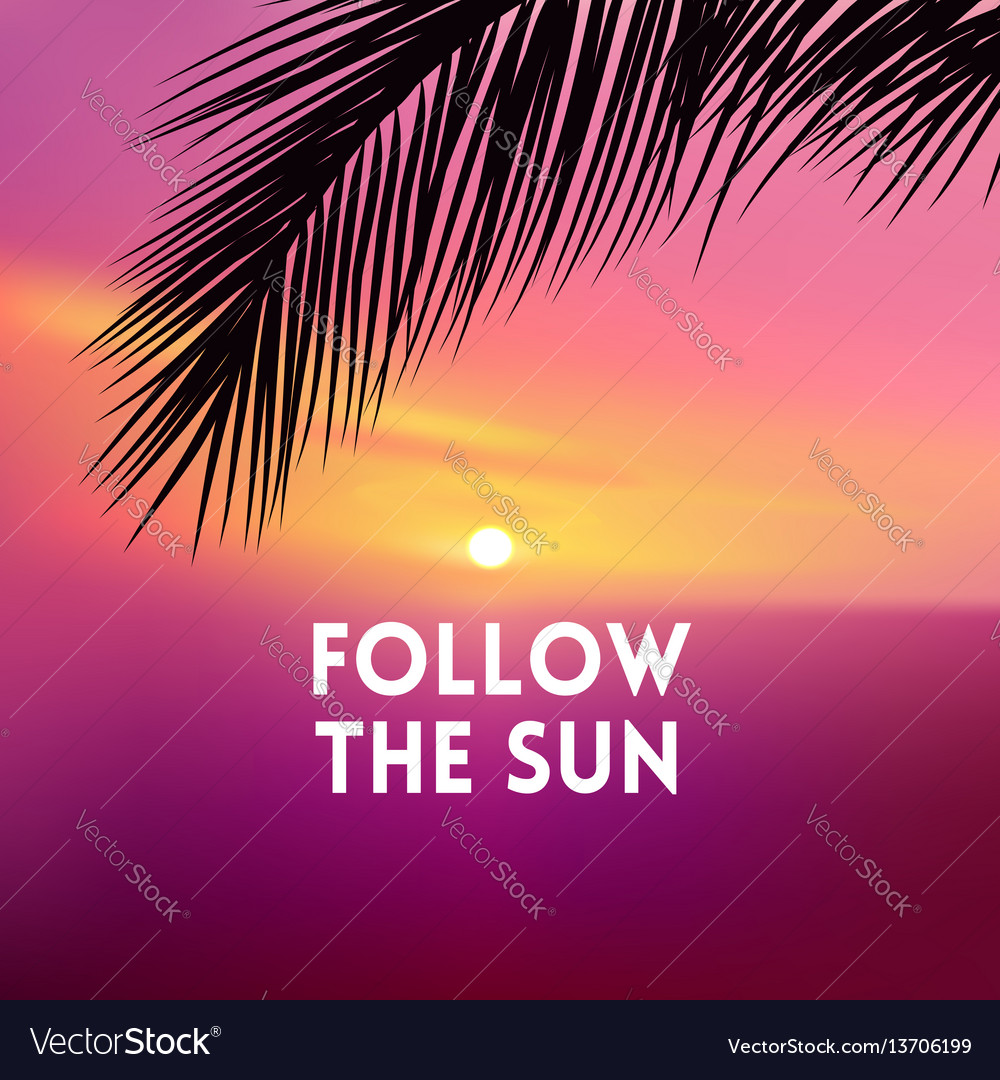 Square blurred pink background - sunset sea and vector image