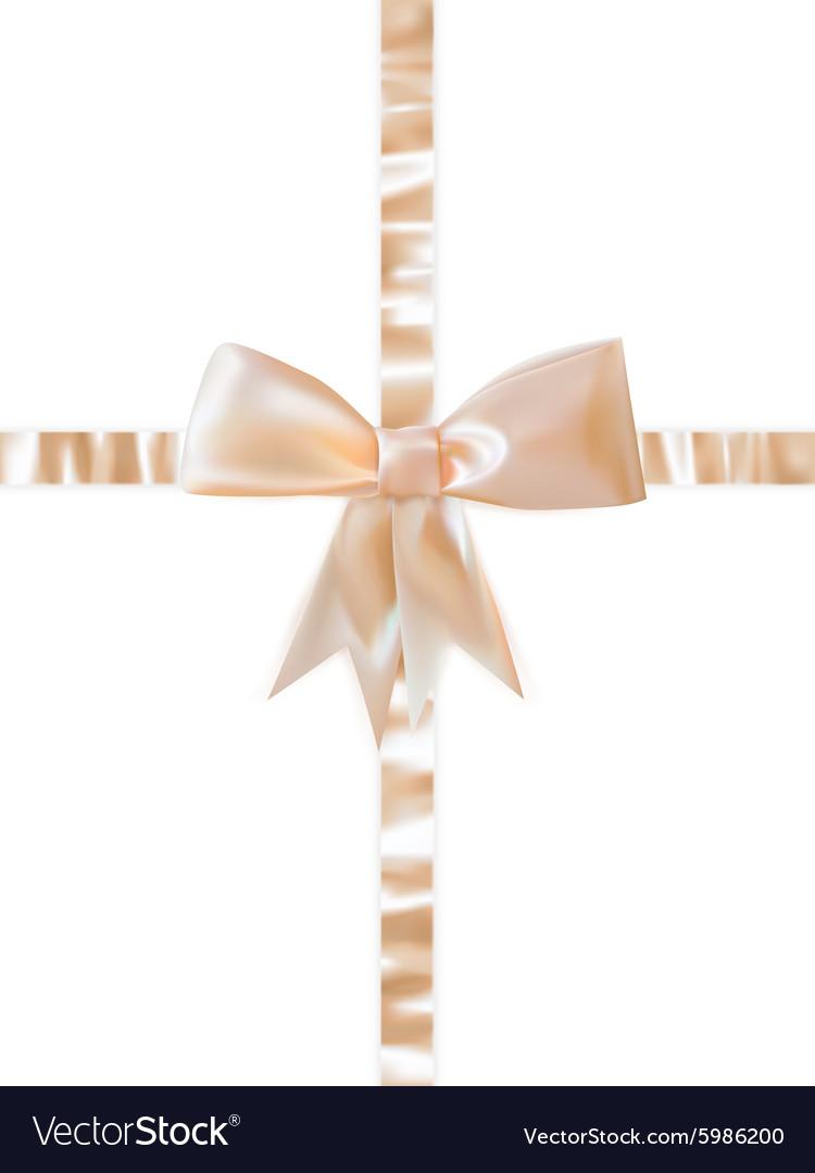 Beautiful bow on white background EPS 10 vector image