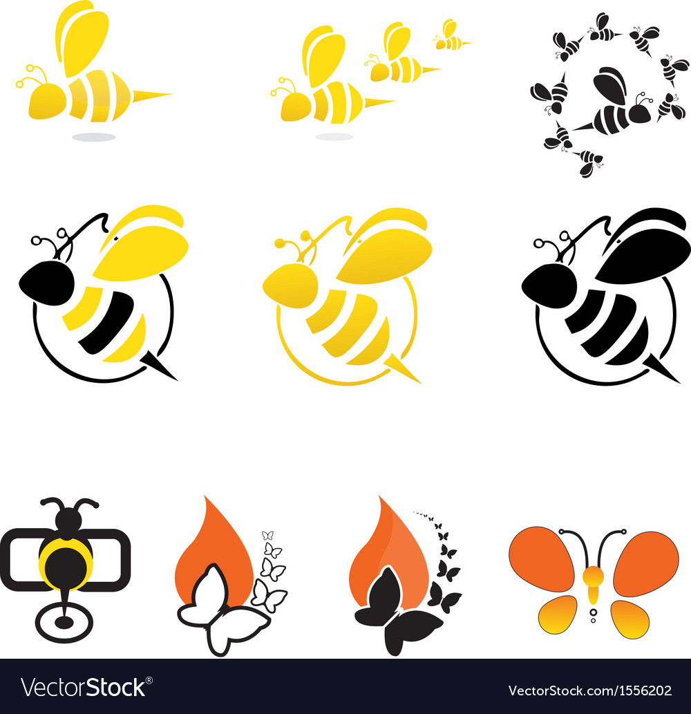 Bee butterfly vector image