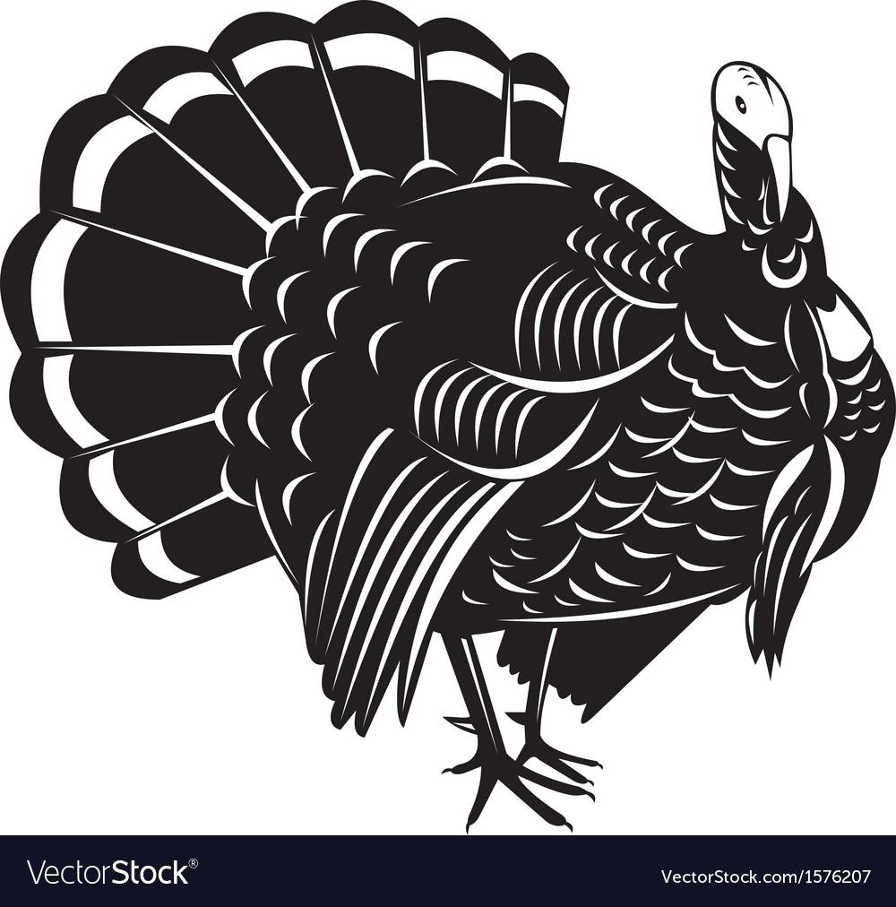 wild turkey retro royalty free vector image vectorstock