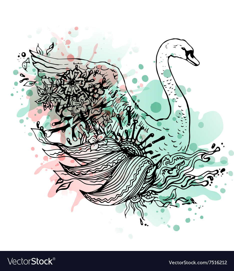 Swan watercolor abstract graphic colored bird vector image