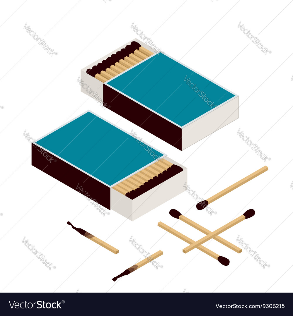 Matches and matchbox Isolated on white New vector image
