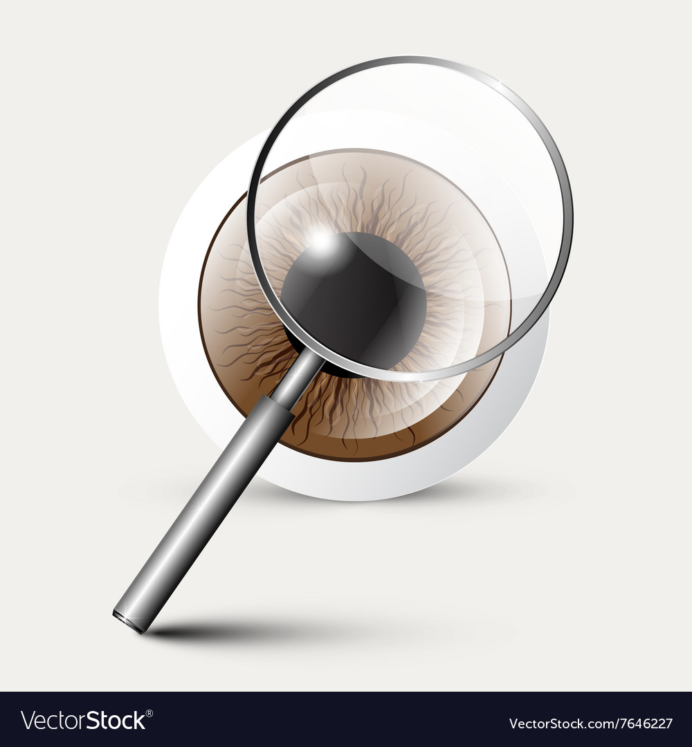 Magnifying Glass with Eye symbol vector image
