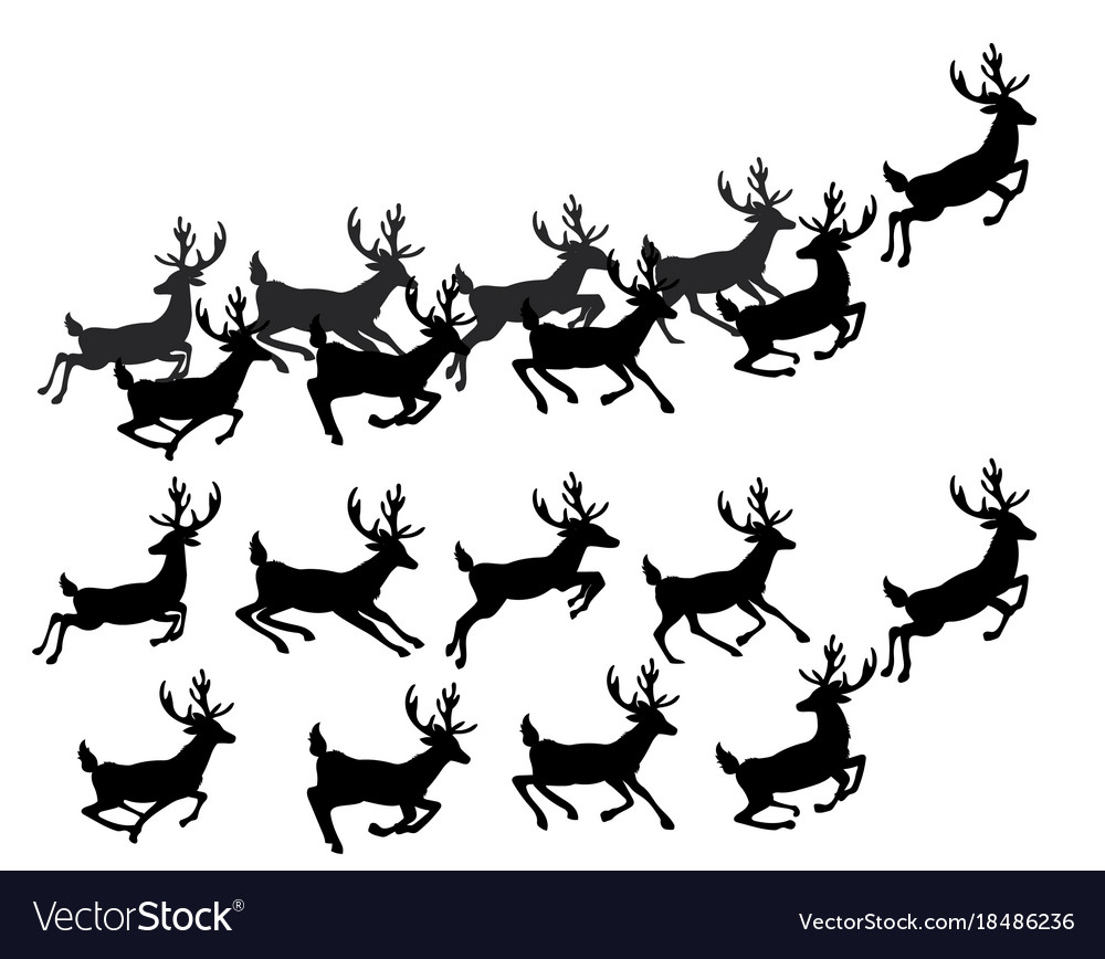 a set of silhouettes of running deer collection vector image