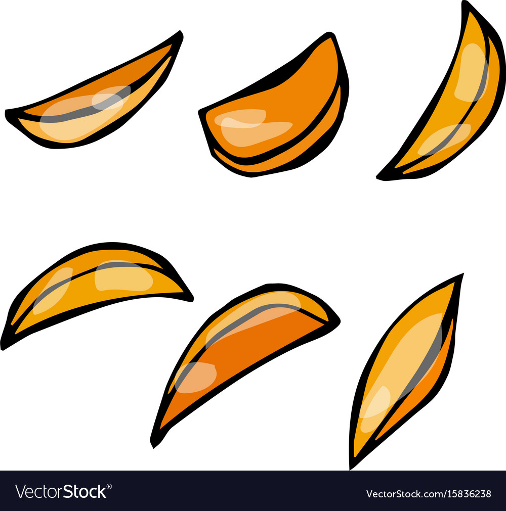 Hand drawn of potato wedges vector image