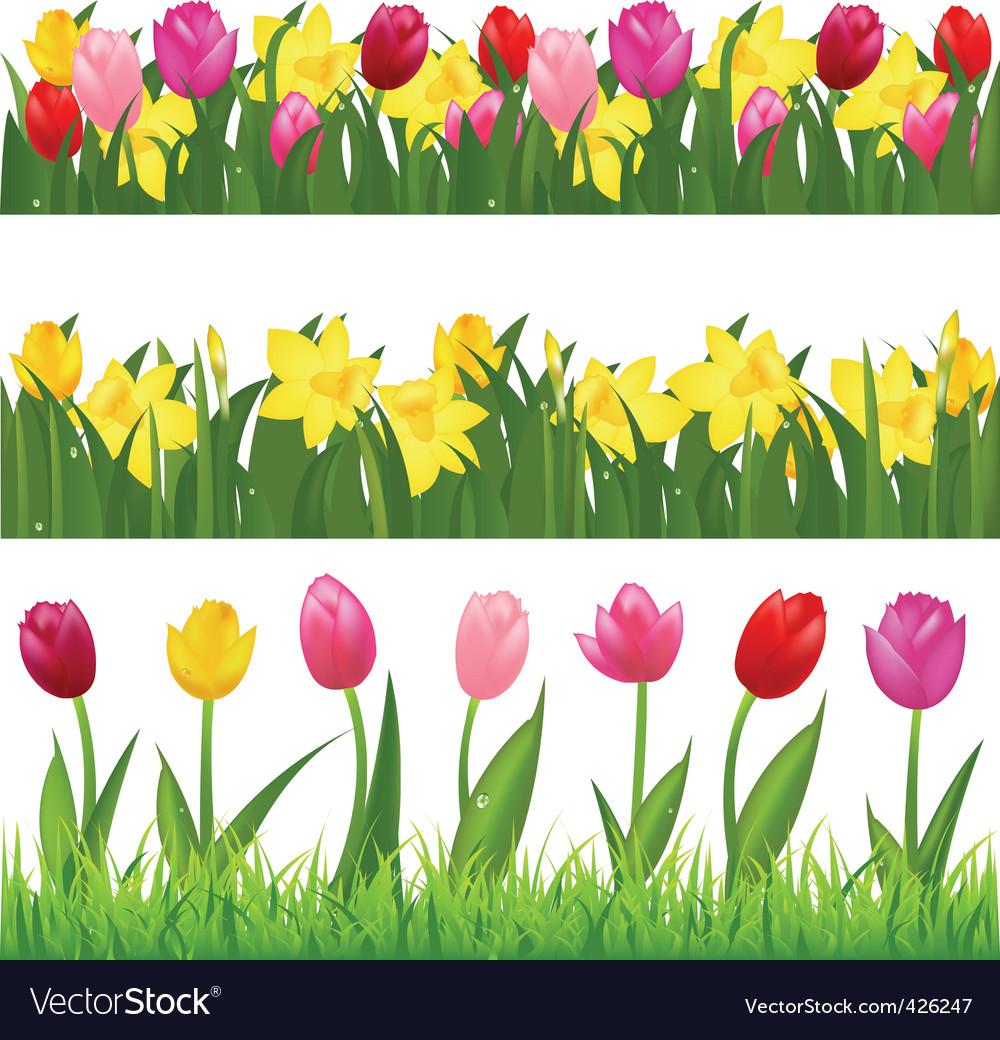 Flower borders vector image