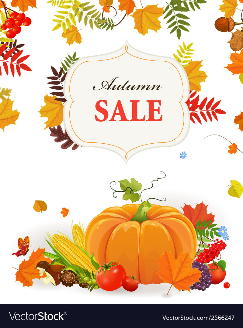 Autumn poster for your design vector image