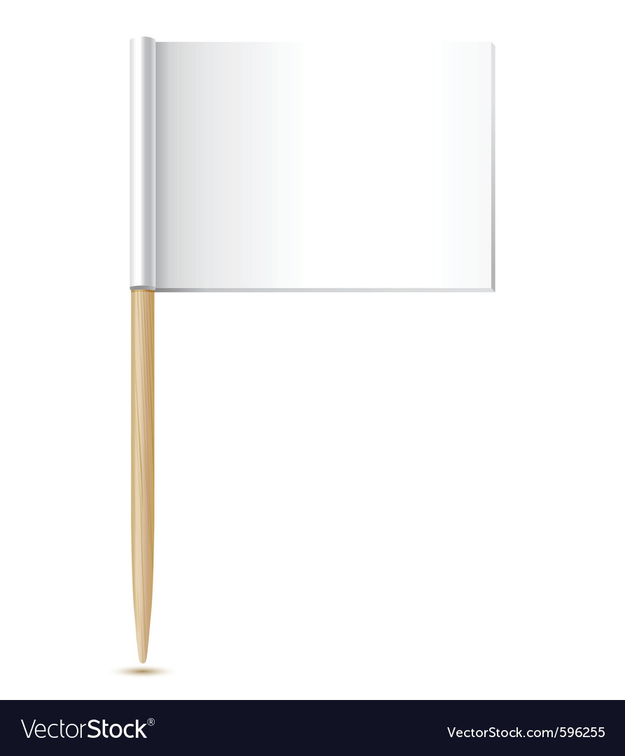 Flag toothpick vector image