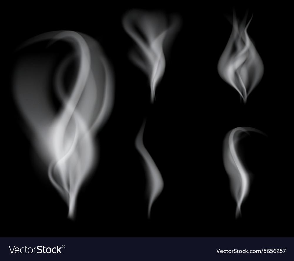 Realistic smoke on black background vector image