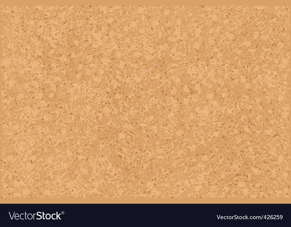 Cork vector image