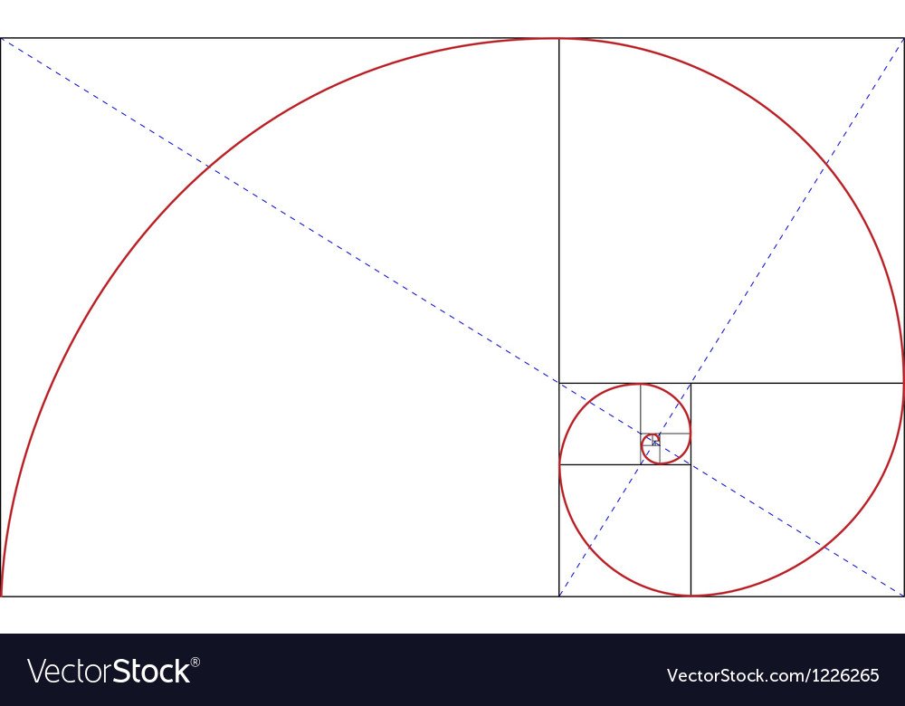 Fibonacci golden ratio vector image