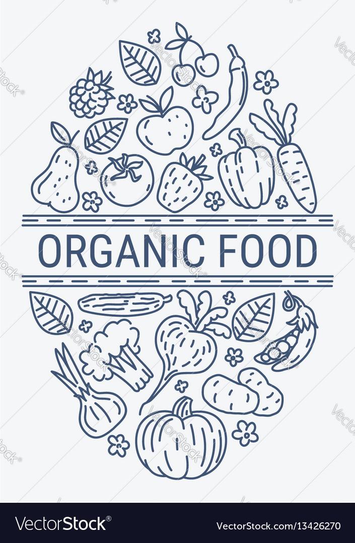 Healthy organic eco vegetarian food design vector image