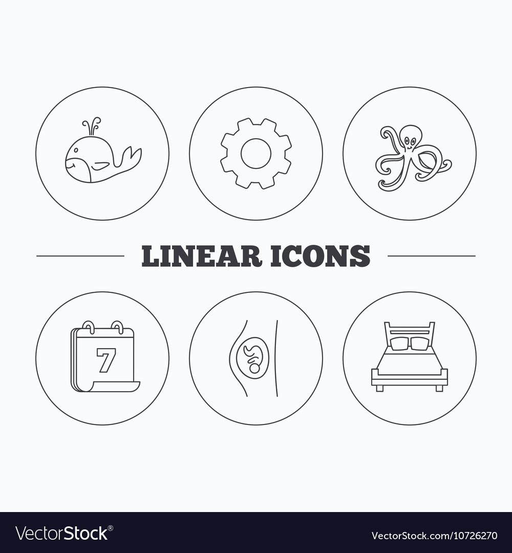 Whale octopus and double bed icons royalty free vector image whale octopus and double bed icons vector image pooptronica