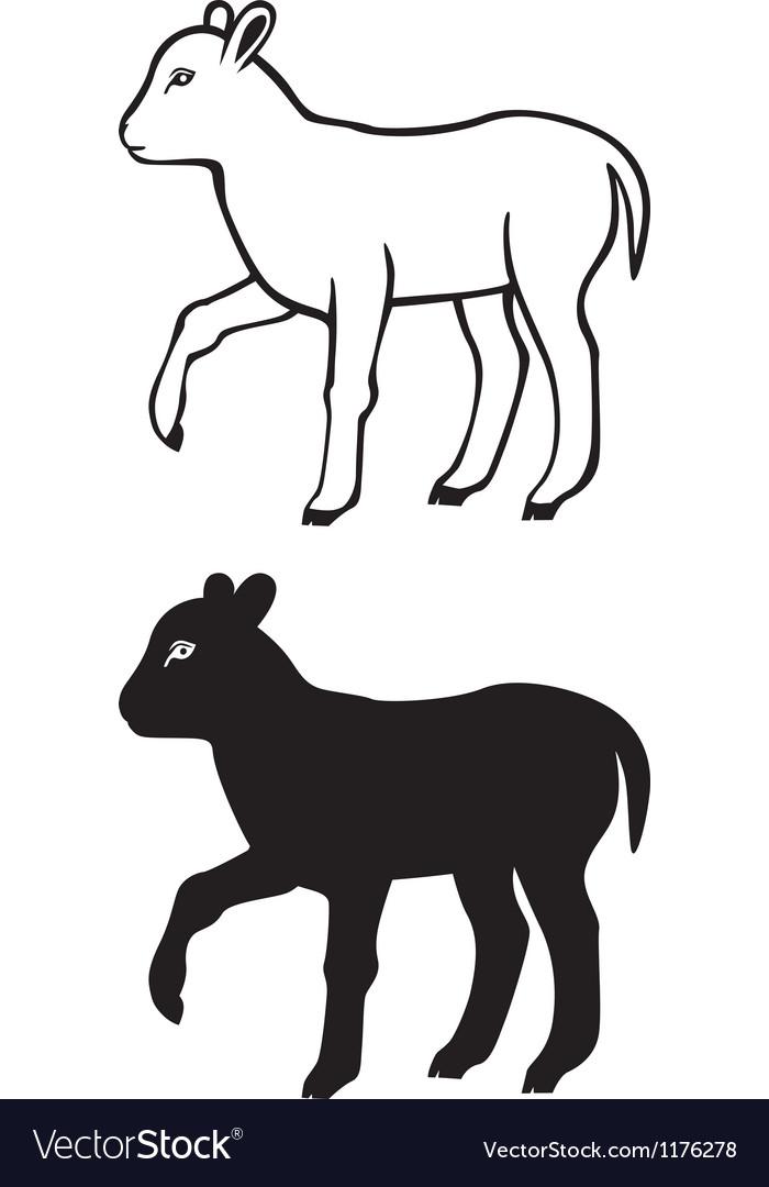 Lamb contour vector image