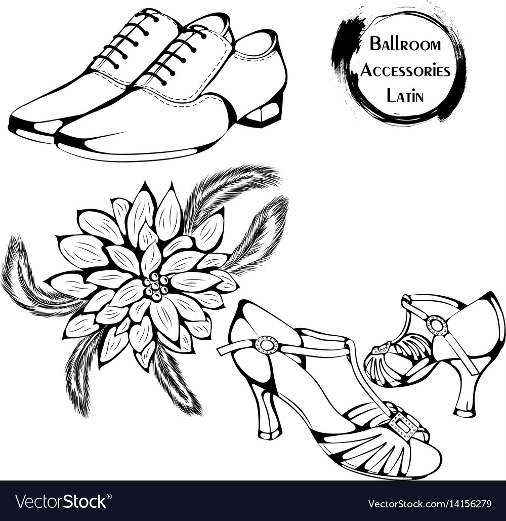 Dance line ballroom latina accessories vector image