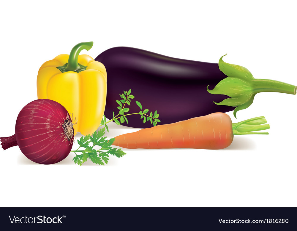 Eggplant peppers carrots onions parsley marjoram vector image