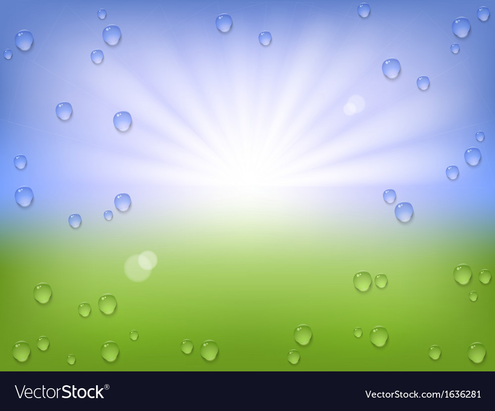 Spring water background vector image