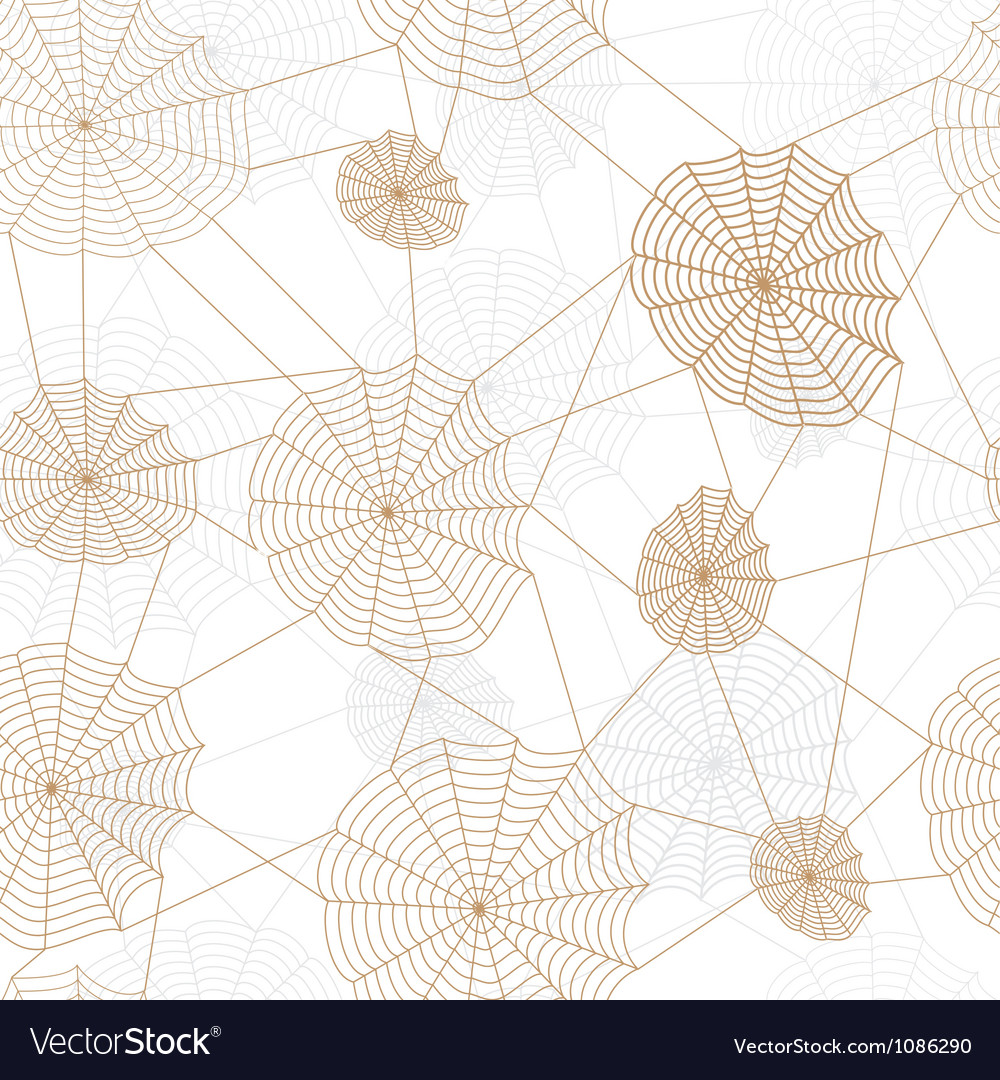 Spider retro web network vector image