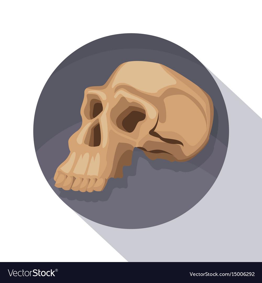 Circular frame shading of poster closeup human vector image