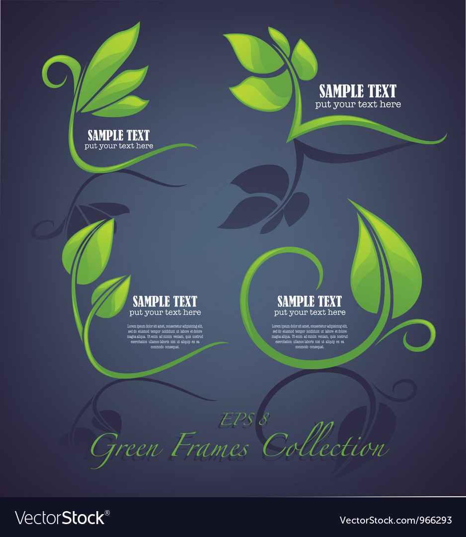 Decorative green leaves and frames vector image